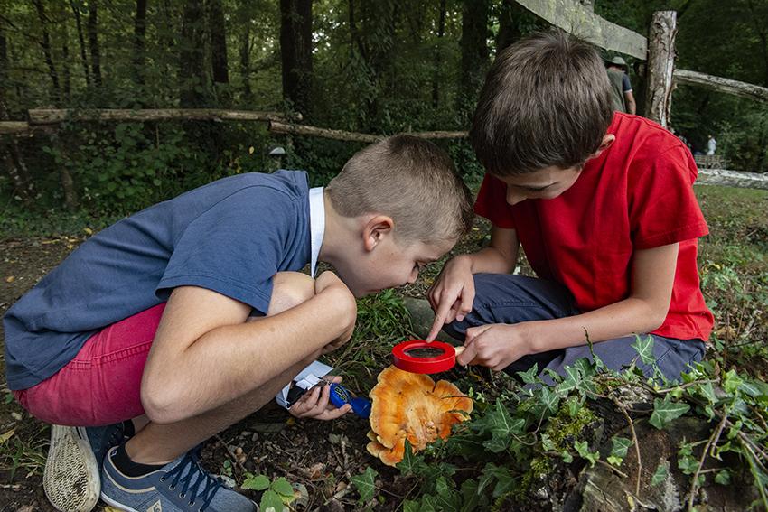 Refuge de Grasla - Atelier nature et découverte pour enfants et parents