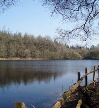 Le Refuge de Grasla - Vue étang